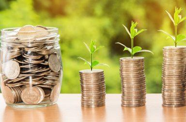 investimento bizcapital